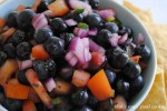 Minted Blueberry Salsa 155 copy
